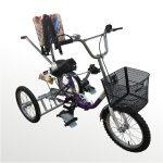 Велосипед для детей с ДЦП реабилитационный ВелоСтарт